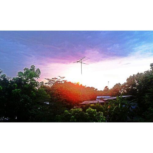 Sunset// sun