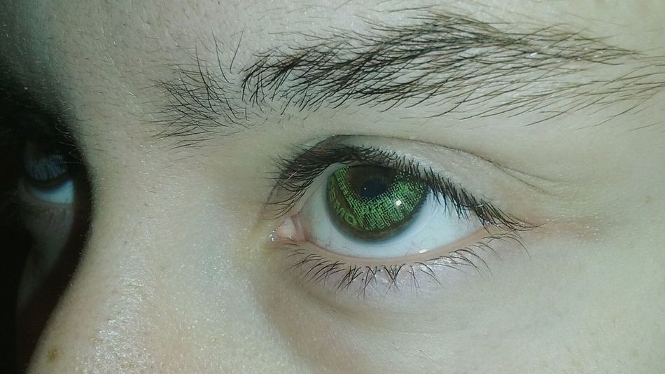 Eyes Colored Contacts  Manipulated