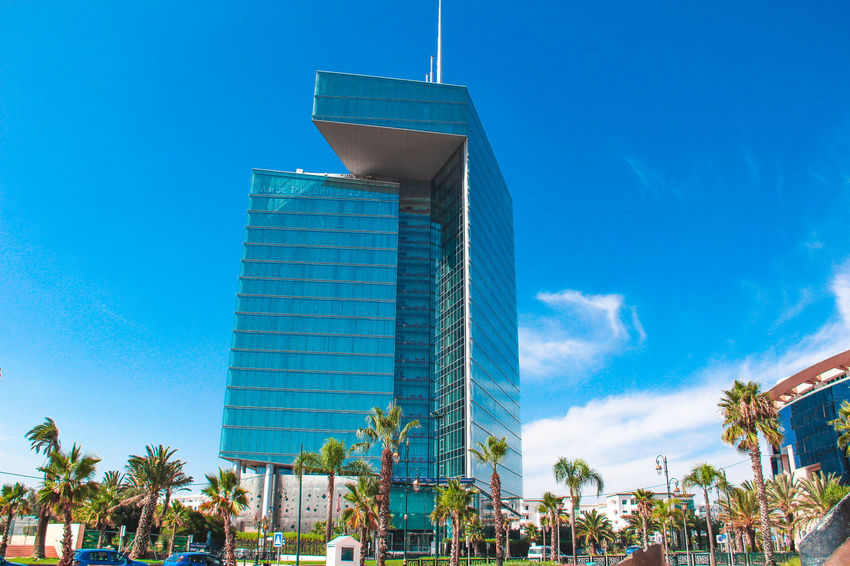 Architecture Building Exterior Built Structure Sky City Tree Modern Blue Office Building Exterior Building Plant Incidental People Tropical Climate Palm Tree Skyscraper Day Office Low Angle View Glass - Material Outdoors Rabat Rabat Morocco Morocco Morocco Travel Hay Riad