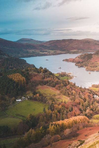 A view of Ullswater on an Autumn day with bright light and colours Scenics - Nature Beauty In Nature Cloud - Sky Water Tranquil Scene Tranquility Sky Mountain Environment Landscape Nature Plant Tree No People Day Non-urban Scene Lake Land Idyllic Outdoors Change Copy Space Autumn Autumn Scene Lake District