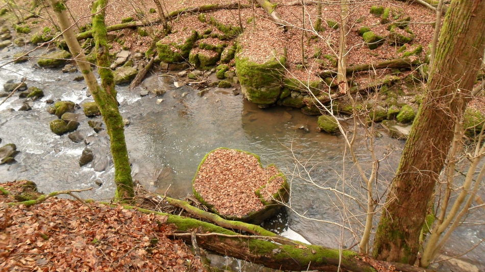 Ancient Stone Age The Past Observer Beauty In Nature Bridge Day Flowing Germany History Moss Nature Neolithic No People Outdoors Plant River Rock Rock - Object Scenics - Nature Solid Stream The Past Tranquility Water