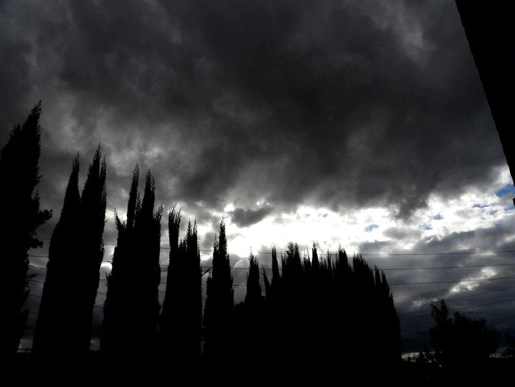 Taking Photos Enjoying Life Riverside California No People, Sky Clouds Sky And Clouds Trees Black And White Photography Black And White Outdoors Silhouettes Nature Storm Clouds Gloomy Weather Thunder Clouds Ice Age Monochrome Photography