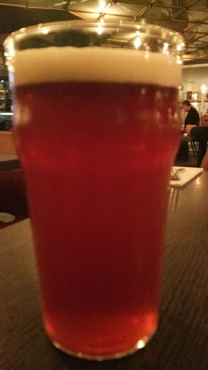 IPA Indian Pale Ale Alcohol Drink Happy Hour Drinking Glass Cold Temperature Bar - Drink Establishment Frothy Drink Table Beer Glass Beer Bar