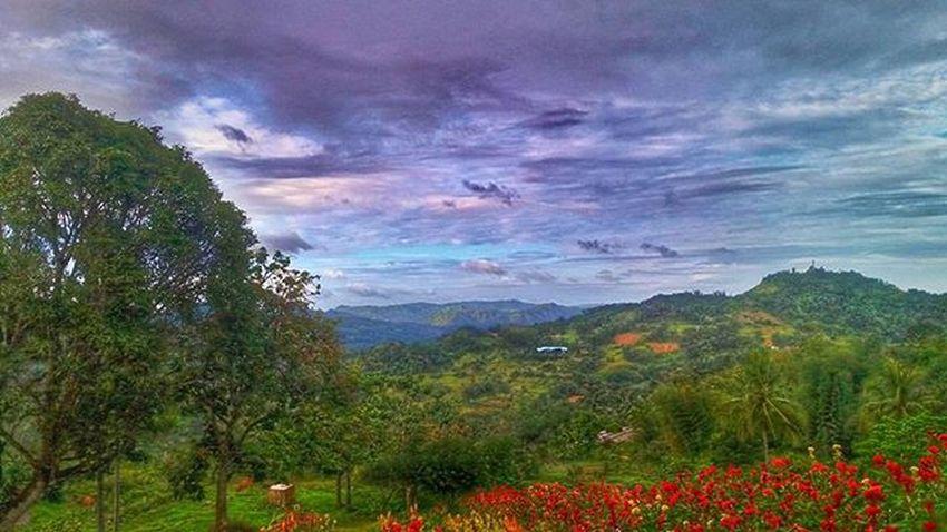 Kabukiran Wander Explore ExploreEverything Nature Like4like Photooftheday Igersph Cebu Garden