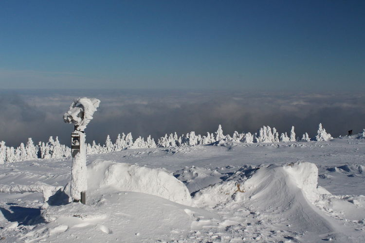 winter impressions of Nationalpark Harz Cold Temperature Snow Winter Nature Harz Brocken Trees Barks Of A Tree Sky Beauty In Nature Tranquil Scene Scenics - Nature Tranquility Day No People Environment Landscape White Color Non-urban Scene Land Blue Copy Space Frozen Snowcapped Mountain