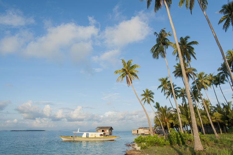 The Beauty of Maiga-Sipadan Island in Borneo, Malaysia. Beach Coconut Trees Day Island Mabul Maiga Island Natural Natural Beauty Nature Sabah Borneo Sand Scenics Seagypsy Seascape Semporna Sibuan Island, Sky Tranquil Scene Tranquility