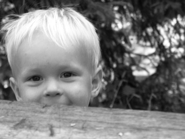 Infancy Blond Hair Boy Boys Childhood Close-up Cute Day Happiness Headshot Hide And Seek Human Eye Human Face Innocence Kid Lifestyles Looking At Camera One Boy Only One Person Outdoors People Portrait Real People Smile :) Smiling