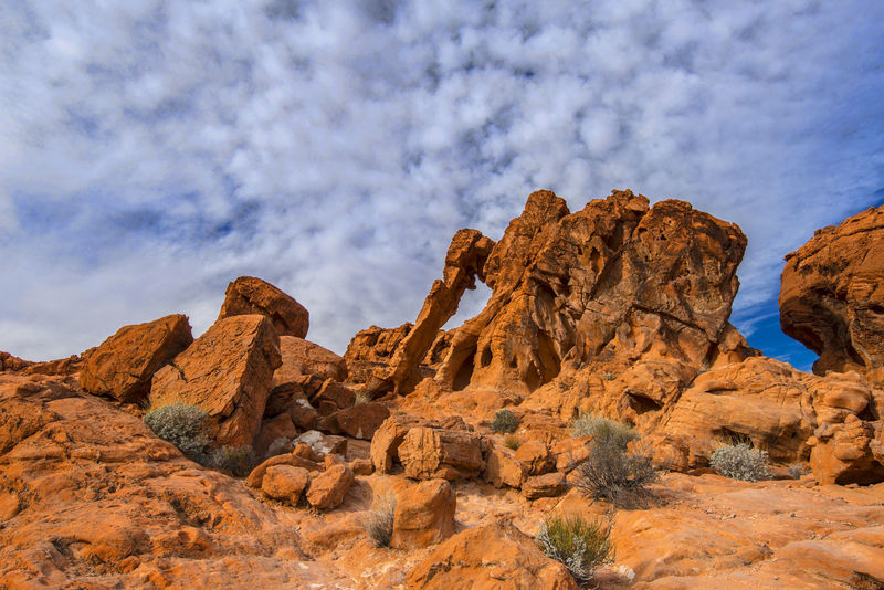 Valley Of Fire Arid Climate Beauty In Nature Cloud - Sky Day Desert Elephant Rock Elephant Rocks Geology Landscape Low Angle View Nature No People Outdoors Physical Geography Rock - Object Rock Formation Rock Hoodoo Scenics Sky Tranquil Scene Tranquility Travel Destinations