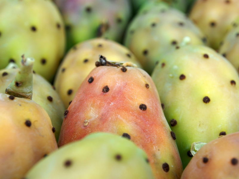 Sicily Sicily, Italy Close-up Figs Of India Food And Drink Freshness Fruit Full Frame No People Prickly Pear Cactus