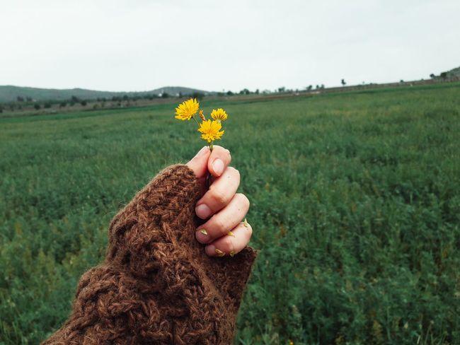 Yellow Yellow Flower First Eyeem Photo Taking Photos Good Morning Love♥
