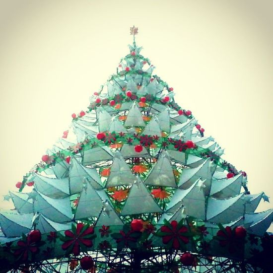 Epic fail na worm's eye view... hahahaha Bais City's GIANT Christmas Tree :3 Wormseyeview GiantChristmasTree Bais BaisCity Christmas