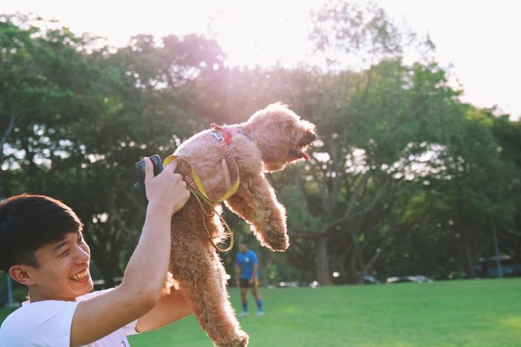 Happiness and love Pet Portraits Animal Themes Day Dog Domestic Animals Fun Grass Happiness Holding Mammal Nature One Animal One Person Only Women Outdoors People Pets Playing Real People Smiling Sunlight Teddy Bear Tree Young Adult Young Women Modern Love