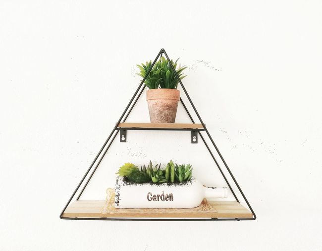 The triangular shelf is attached to a white wall with flower pots and statues on the floor. Arrangement Plant Part Western Script Leaf Growth Container Green Color Wood - Material Communication Wall - Building Feature Still Life Nature Copy Space Indoors  No People Studio Shot Plant Chick-pea Bean Green Pea Lentil Greenhouse Wheelbarrow Horticulture Social Responsibility Gardening Soybean Watering Can Gardening Equipment Plant Nursery Gardening Glove Sapling Planting Bonsai Tree Architectural Model Flower Pot Legume Family Pinaceae Text Potted Plant Alphabet Flower Herb Window Box Orthographic Symbol Tree White Background