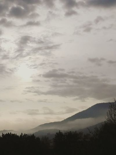 Mountain Scenics Tranquil Scene Tranquility Beauty In Nature Silhouette Landscape Sky Idyllic Tree Nature Mountain Range Majestic Cloud - Sky Non-urban Scene Cloud Cloudscape Fog Physical Geography Remote