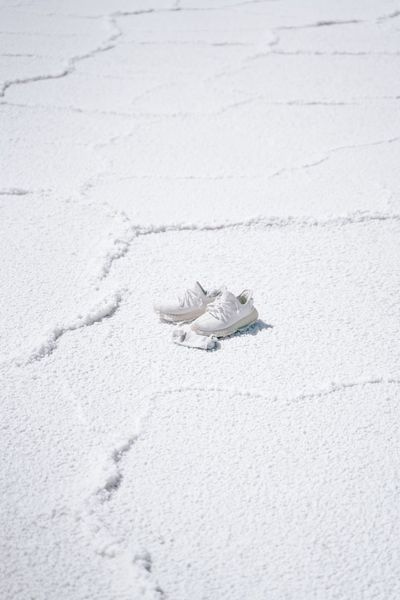 Lost adidas Shoes In The Salt Flats Lost Shoes Adidas Boost Adidas Lost Items Socks Shoes Land No People Nature Day High Angle View Sand Snow White Color Environment Outdoors