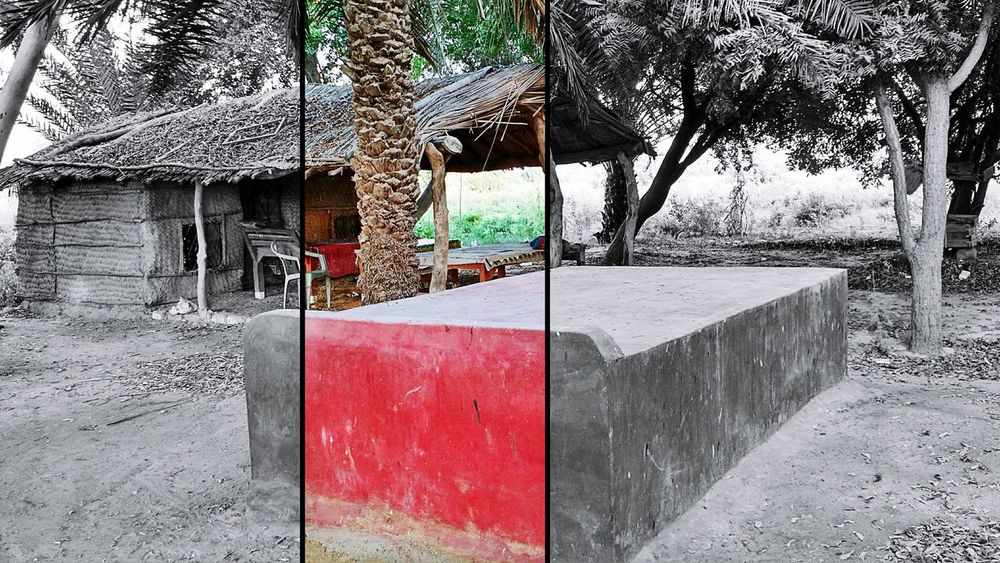 Color Manipulation Outdoors Tree Red Day Colors And Patterns Mobile Photography TakeoverContrast EyeEmBestPics Eye4photography  Karachi Pakistan Eyeemphotography Home Is Where The Art Is No People Karachi EyeEm Wildlife & Nature Mobgraphia