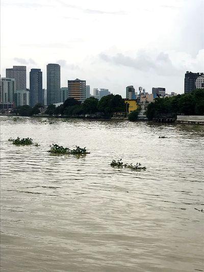 Pasig river,