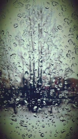 Snowy Water Drops Window