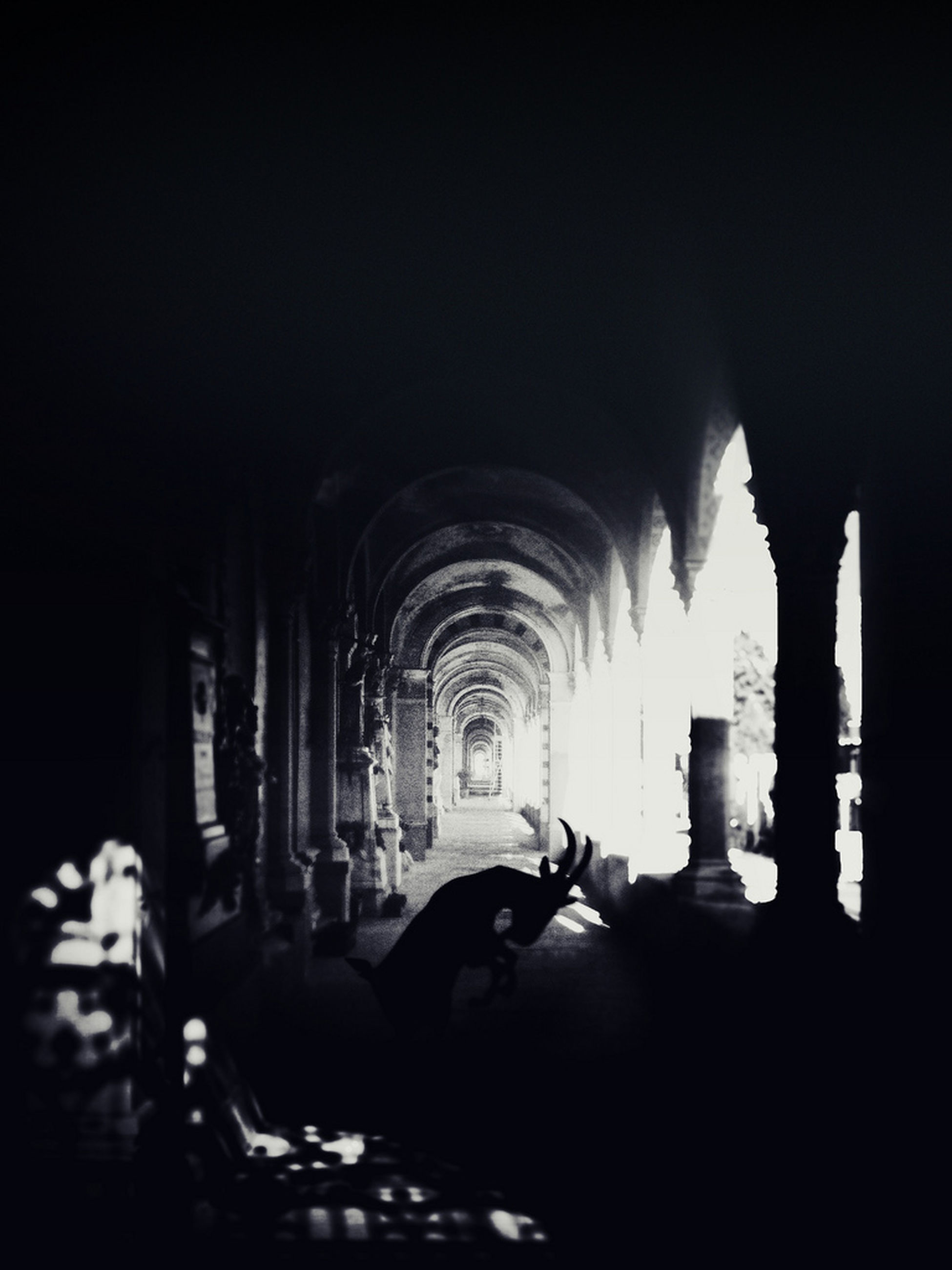 indoors, arch, men, architecture, lifestyles, built structure, person, walking, rear view, corridor, leisure activity, dark, architectural column, the way forward, unrecognizable person, illuminated, night