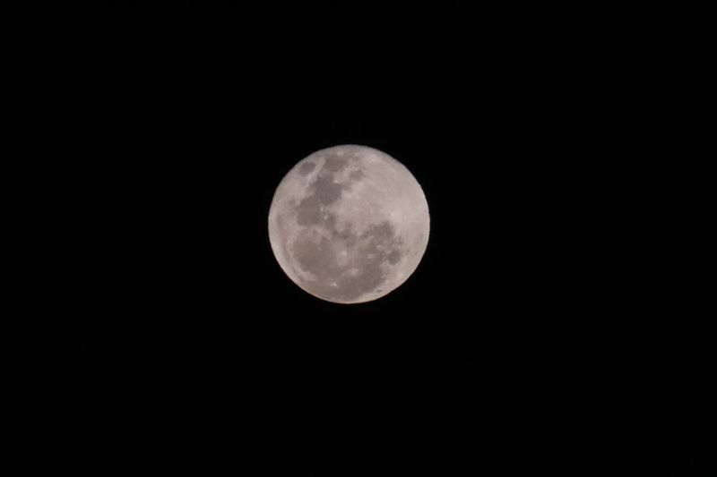 Lunar beauty EyeEm Selects Night Astronomy Space Moon Planetary Moon Sky Circle Beauty In Nature Geometric Shape Full Moon Scenics - Nature Moon Surface Shape Tranquility Low Angle View Tranquil Scene Nature No People Clear Sky