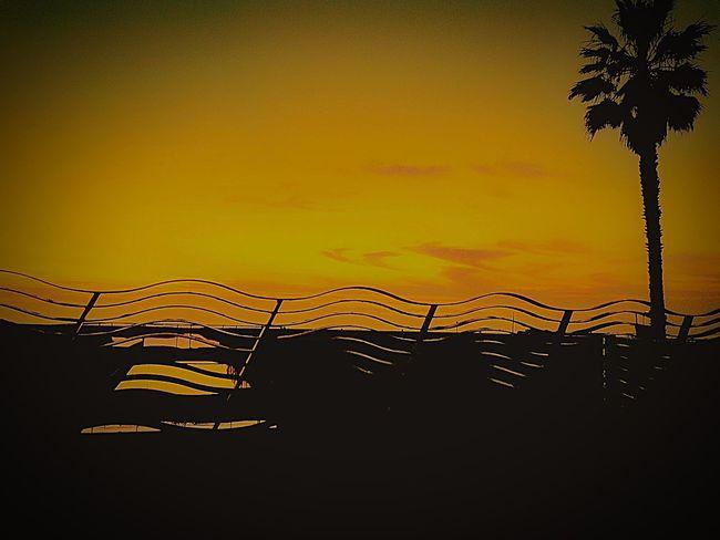 Picoftheday #photooftheday #photography #iphonesia #pikturdis #WeAreTheCulture #jj_forum #webstagram #world #streetstyle #shootinupny #statigram #randomfreshness #tbt #twitter #nycphotography #nyc #les #igdaily #everybodystreet #vsco #streetphotography #s Enjoying Life Serenity Beach Photography Beach Colorsofthesky Venice Colour Of Life Gods Light Skyporn Sunsetsniper Fatalframes ShotOniPhone6 California Eye Em Venicelife Streetart #street #streetphotography #tagsforlikes #sprayart #urban #urbanart #urbanwalls #wall #wallporn #graffitiigers #stencilart #art #graffiti #instagraffiti #instagood #artwork #mural #graffitiporn #photooftheday #stencil #streetartistry #photograp Eyeem Beach Shots Colour Palette EyeEm Best Shots - Landscape Sunset Agameoftones EyeEm BaSeKVisuals