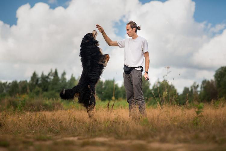 Full length of dog standing on field against sky