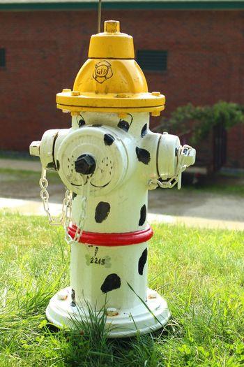 Fire Hydrant Hydrant Art Statue Gardner, Massachusetts Voightlander 40mm F/2.0 Paint The Town Yellow