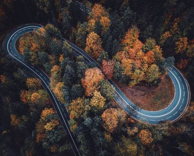 Aerial View Of Winding Road Amidst Autumn Trees In Forest