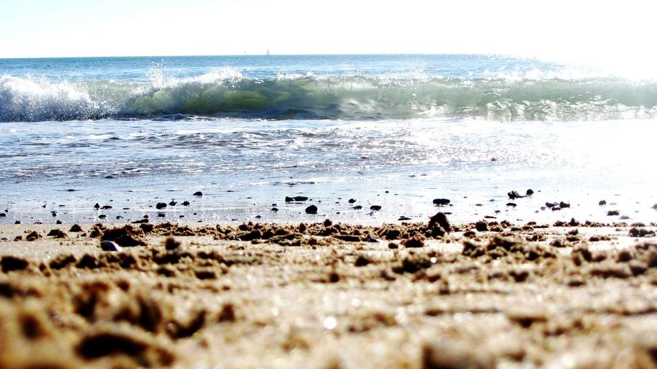 On the Beach... Eyeem Sea Beach Photography Walking On The Beach, Sand And Sea Peace And Quiet NaturalBeauty Walking Around At The Beach Relaxing Taking Photos