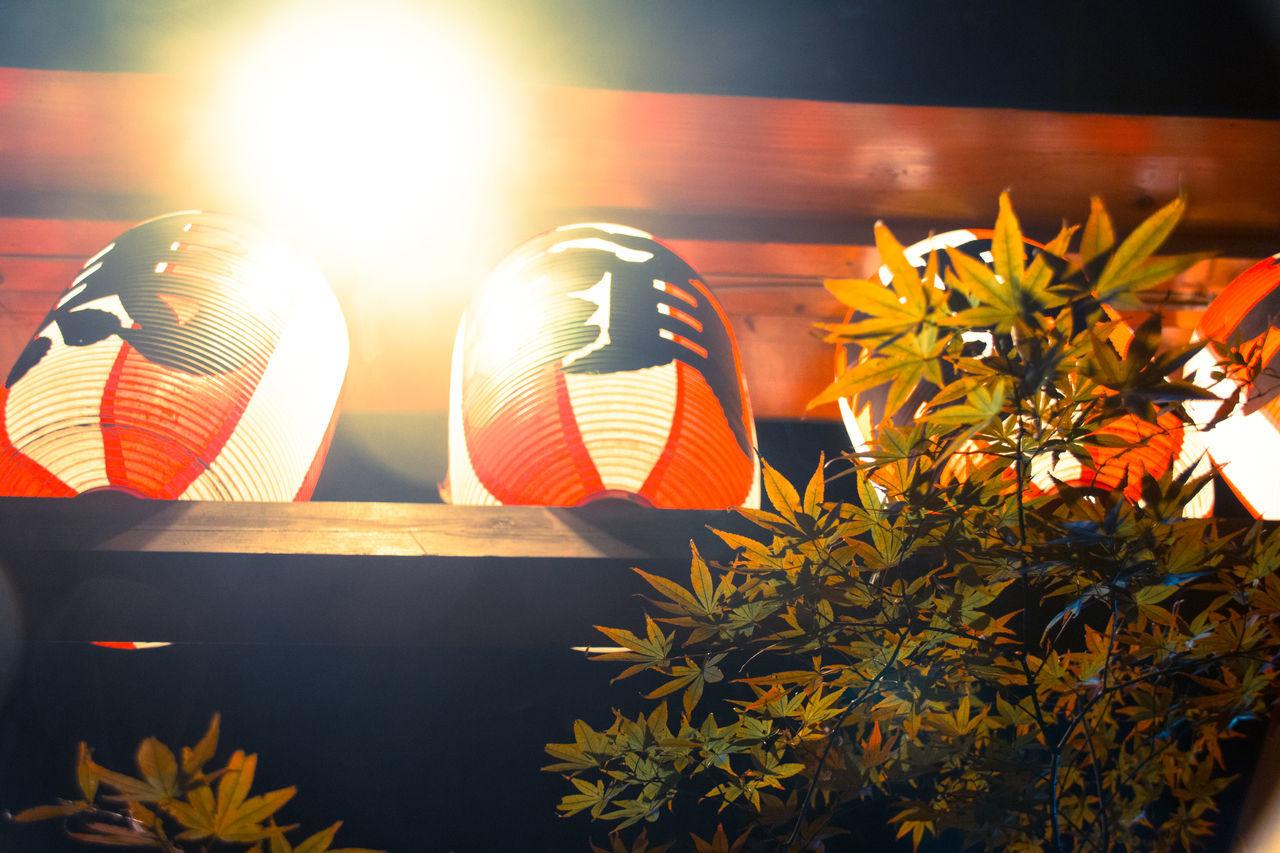 Low Angle View Of Illuminated Chinese Lantern On Shelf