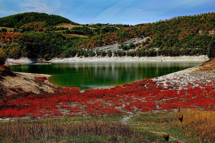 Lago di Fiastra Lake lago Beauty In Nature Nature Scenics Tree Tranquility Tranquil Scene Mountain Autumn Non-urban Scene Water Reflection Outdoors Idyllic No People Change Landscape Day Growth Wilderness Connected By Travel