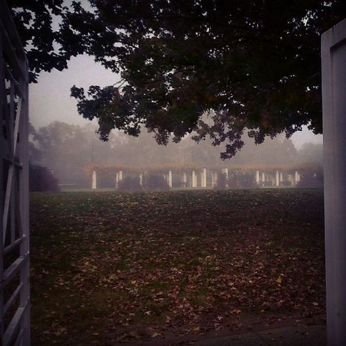 The Pearl White Gate Beckons ... (work awaits)