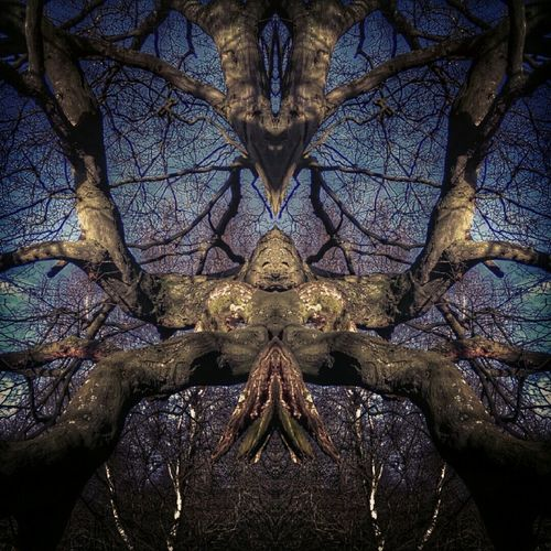 IF THIS OFFENDS.... SORRY. it's what I see..The rape of mother nature... Alien abduction..held down .. Fuckyoumothernature Through The Mirror Horrific Naked Trees Vulva What Do You See? Notes From The Underground This Is NOT Porn ! Restrained Sexsual Fetishism