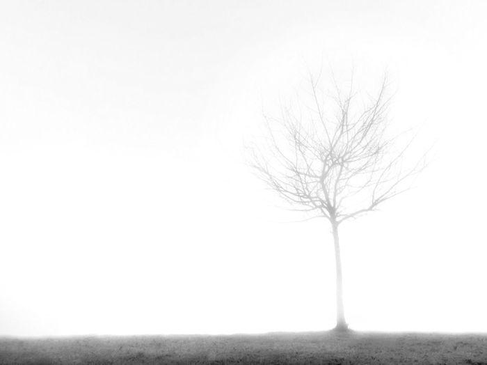 Ghost... Conceptual EyeEm Bnw Blackandwhite Shootermag AMPt_community Landscape NEM Black&white NEM Submissions NEM Landscapes