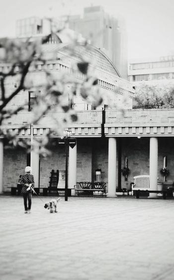Taking Photos Black & White Blackandwhite Cityscapes EyeEm Best Shots Streetphotography