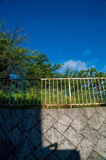 EyeEm Nature Lover EyeEmNewHere Barrier Blue Boundary Clear Sky Copy Space Day Eyeem Sky Fence Nature No People Outdoors Plant Protection Railing Safety Security Shadow Sky Street Streetphotography Sunlight Tranquility Tree
