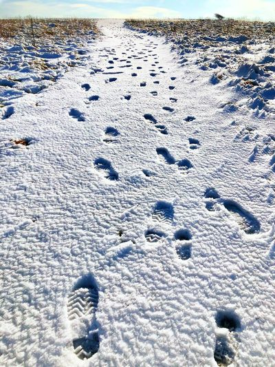 Footprints Trail Eastbourne Beachy Head Winter Cold Temperature Snow Nature Day No People Land White Color Covering FootPrint Sunlight Tranquility Field Frozen