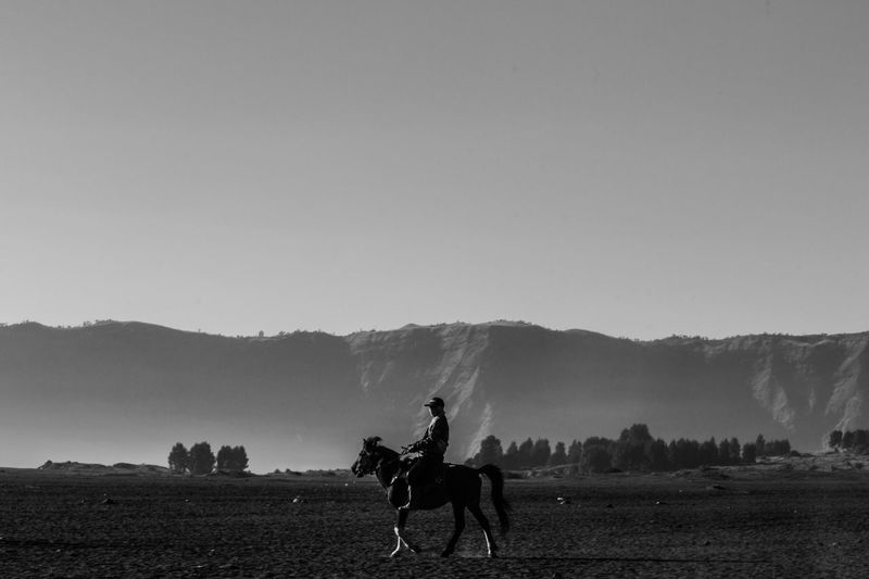 Silhouette man riding horse on field against sky