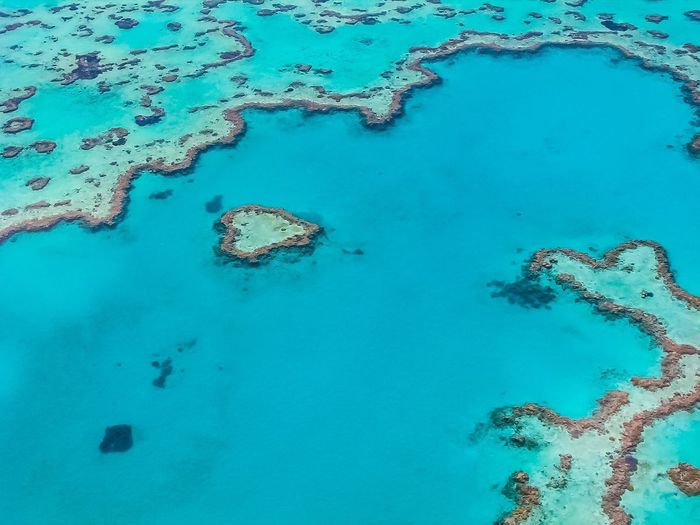 Aerial view of corals in seascape