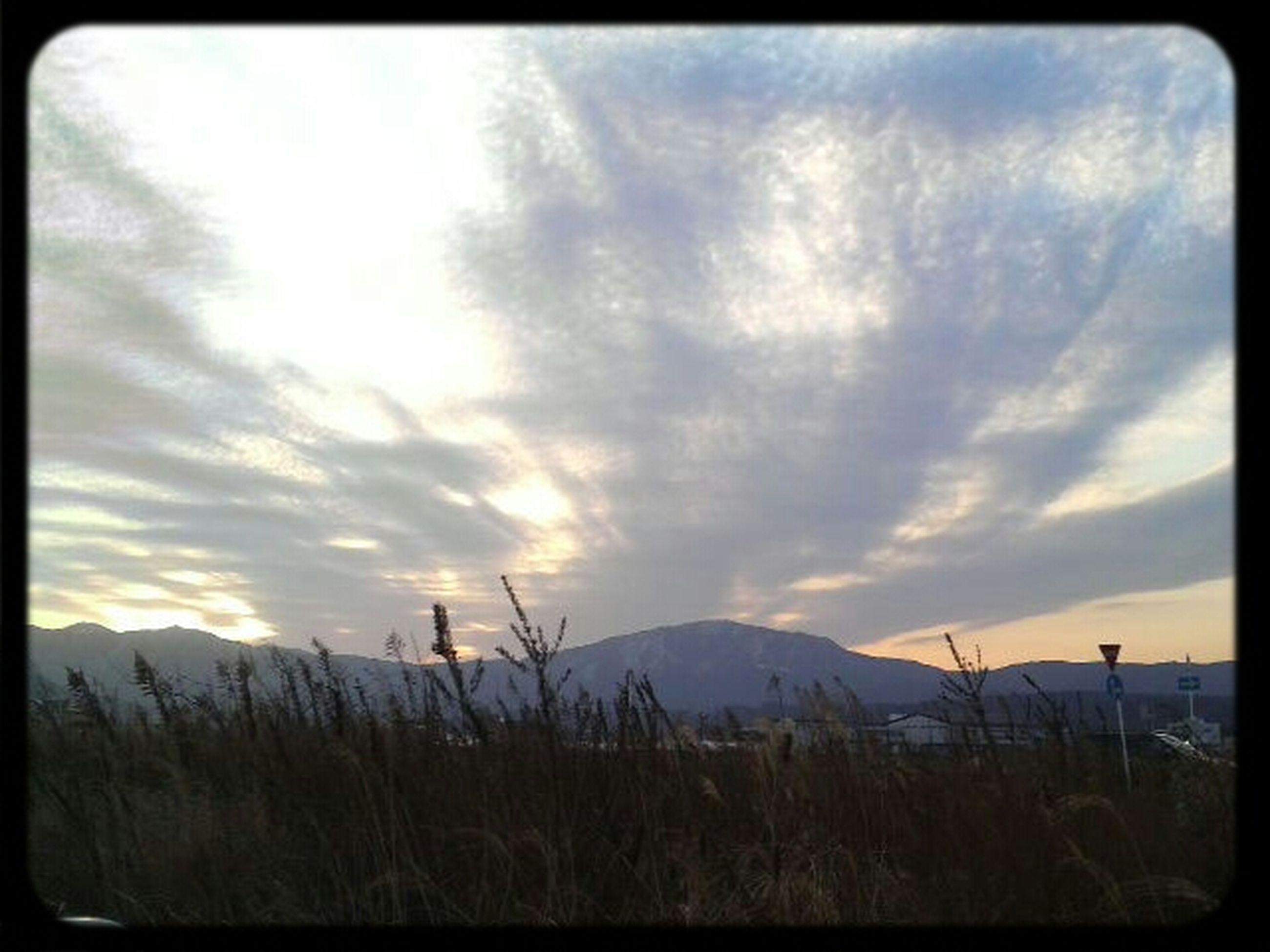 sky, tranquil scene, tranquility, landscape, scenics, beauty in nature, nature, field, plant, cloud, grass, cloud - sky, horizon over land, sunset, non-urban scene, idyllic, rural scene, growth, remote, non urban scene