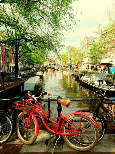 Amsterdam Travel MyLifeInPictures Going Places Stereotypes Bikes Cityscape Horizon Over Water Water Cycling Bicycle Architecture Built Structure