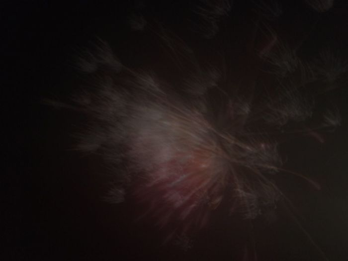 Took a long exposure of a firework and it came out looking like a multi-coloured dandelion clock... Night Studio Shot Motion Blurred Motion No People Long Exposure Firework - Man Made Object Black Background Outdoors Sparkler Firework Illuminated Smoke - Physical Structure Sky Entertainment Exploding Arts Culture And Entertainment (null)Firework Display