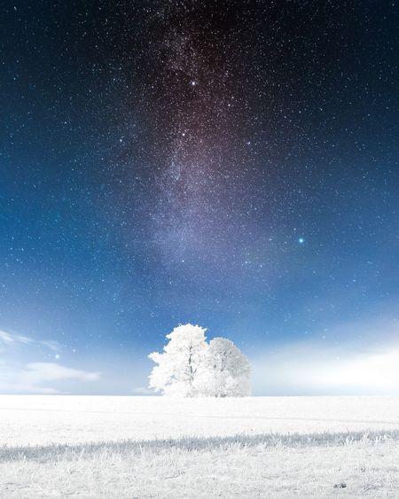Scenic view of snow covered land against star field in sky at night