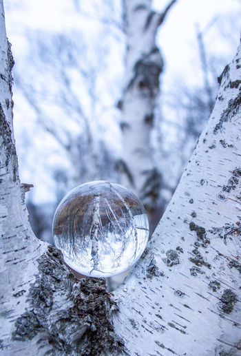 Close-up of crystal ball on snow covered land