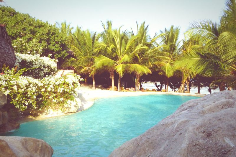 Tree Palm Tree Beach Water Sand Sea Nature Tourist Resort Vacations Blue Sky Day Outdoors Pool Sun Summer TripAdvisor Africa Kenya