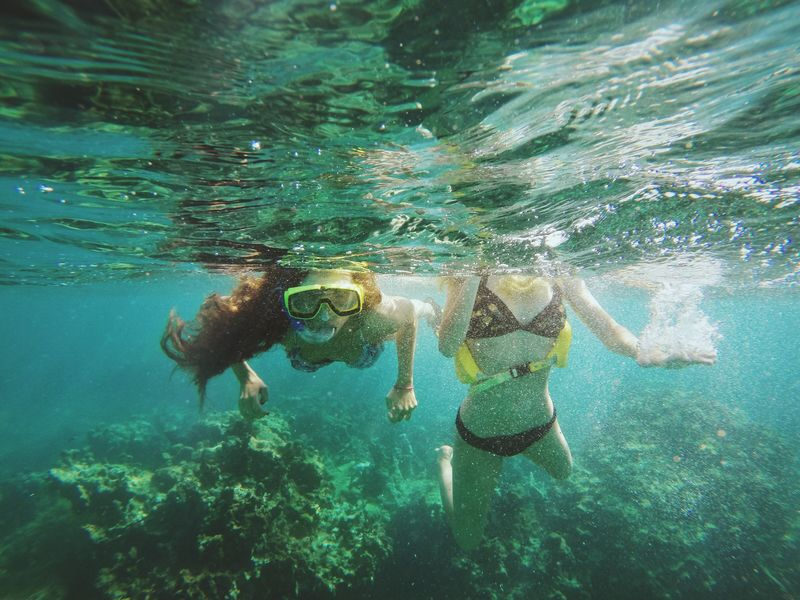 Snorkeling Enjoying Life Relaxing Lobo Island Puerto Rico Underwater Waterlife First Eyeem Photo