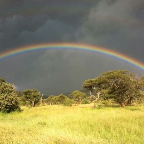 The rainy clouds, the sunshine and the rainbow .Serengeti Wildafrica MyTanzania