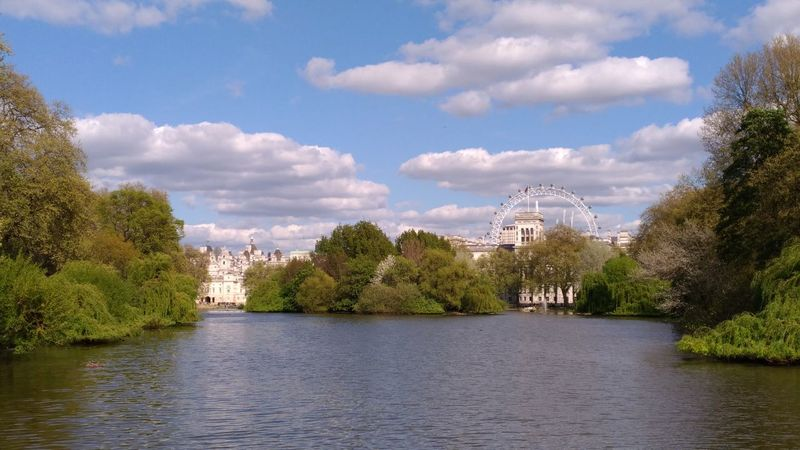Tree Cloud - Sky Water Tranquility No People Travel Destinations River Outdoors Day Sky Vacations Landscape Nature Forest Tree Area Cityscape Politics And Government City Buckingam Palace Hydeparklondon Hyde Park London Walking Around Nature Holiday London Lifestyle London Eye, London