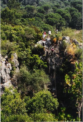 Abseiling Abseilling Beauty In Nature Day Freshness Green Color Nature Outdoors Plant Rock Rock Formation Sport Sunlight