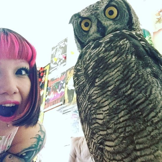 Owl Eule Selfie ✌ Self Portrait Cutepets Pet Photography  YOMO KAWAII Hanging Out Chill Chilling Relaxing Love Bird Vogel Friendship Togetherness Animal Themes Indoors  Pinkhair Pink ThatsMe Lifestyles Eyes Augen